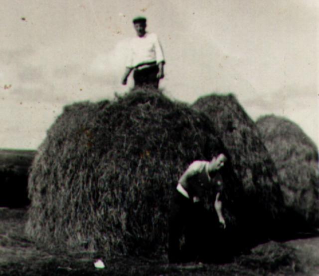 Jack Coyle on a haystack. 1966